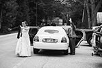 Door County Wedding Limo Service
